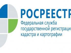 Совет Федерации принял законы о «лесной амнистии» и о ведении садоводства и огородничества для собственных нужд